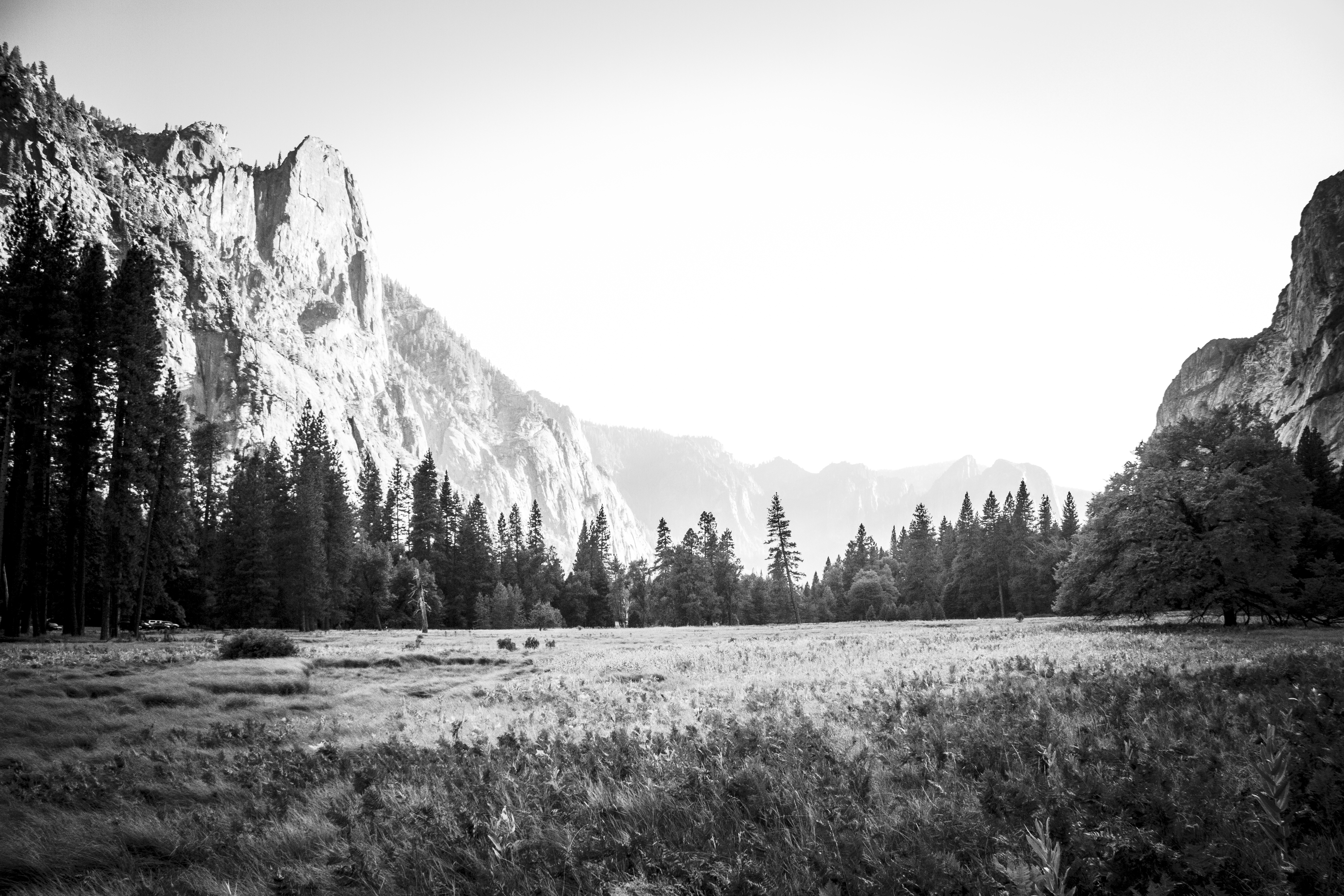 Yosemite in Black and White - Viola Jean Photography