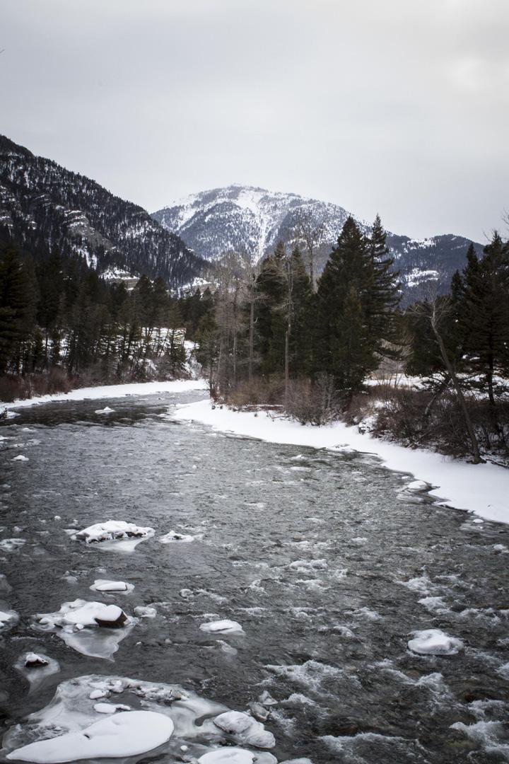 Montana07