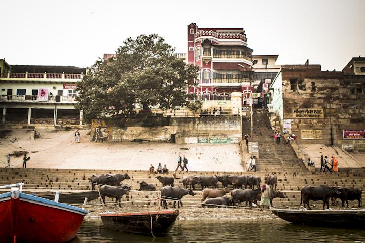 Varanasi_river10