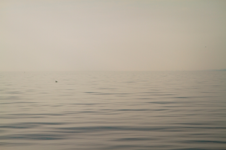 Trieste_17