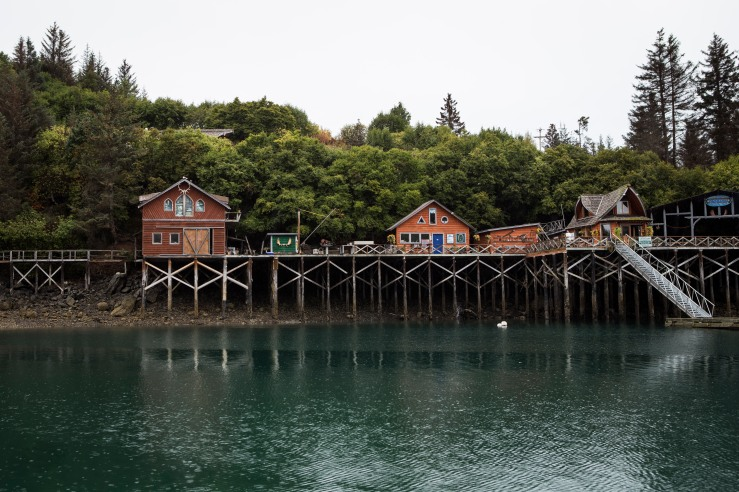 Halibut_Cove_Post_23
