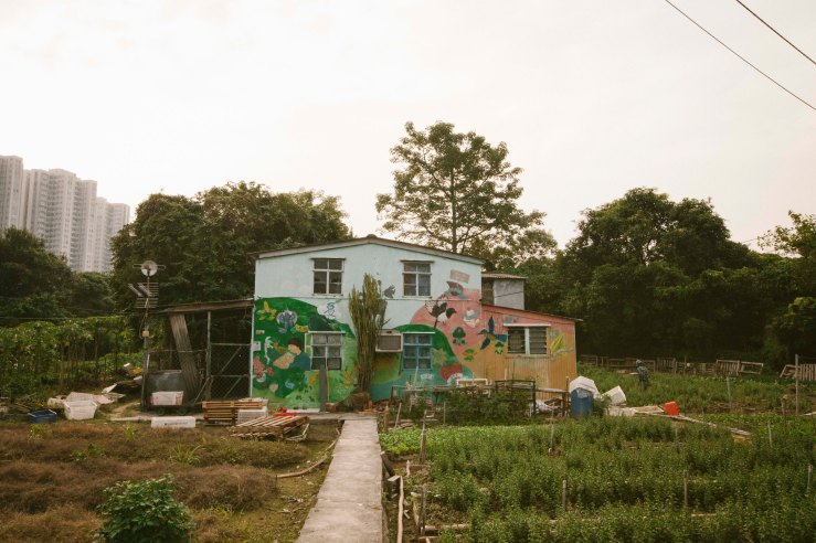 mapopo_farm_16
